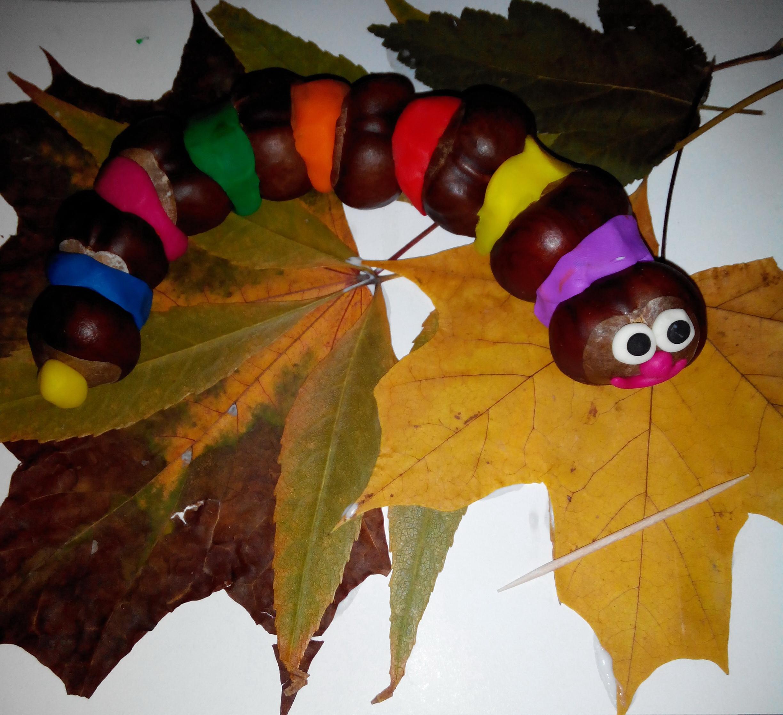 Поделки из каштанов своими руками на тему осень в школу. Фото